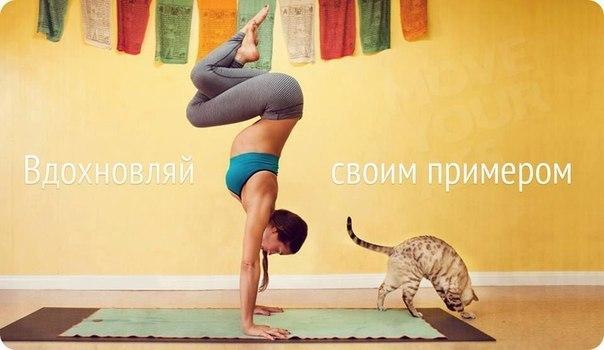 12 фактов о йоге, которые стоит знать