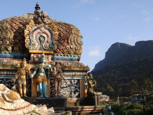 Новогодний йога-семинар на Шри-Ланке