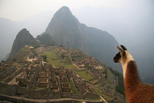 Мы повторяем йога-тур в Латинскую Америку