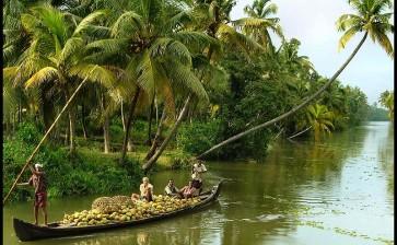 Индия (Керала)
