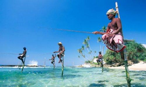 Йога-семинар с Кириллом и Ольгой Ржаными на легендарном острове Шри-Ланка.