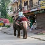 nepal2011-66