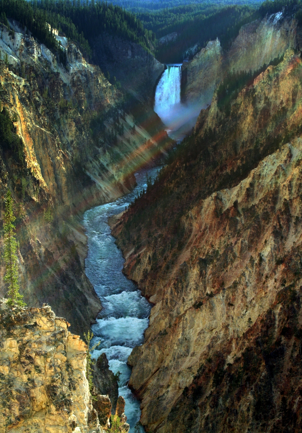 Нижний Водопад и каньон реки Йеллоустон. Фото: Adam Olson