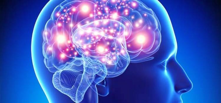 Ученые изучили процесс появления в мозге человека бета-ритмов