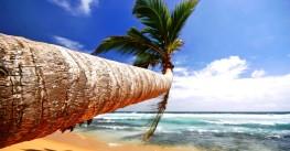 Йога тур на Мальдивы «В объятиях океана»
