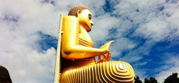 Новогодний йога-тур на остров Цейлон (Шри-Ланка)