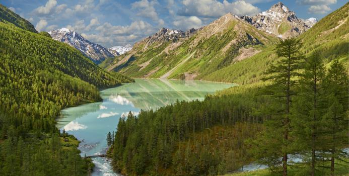 «Видеть суть» Горный Алтай. Россия