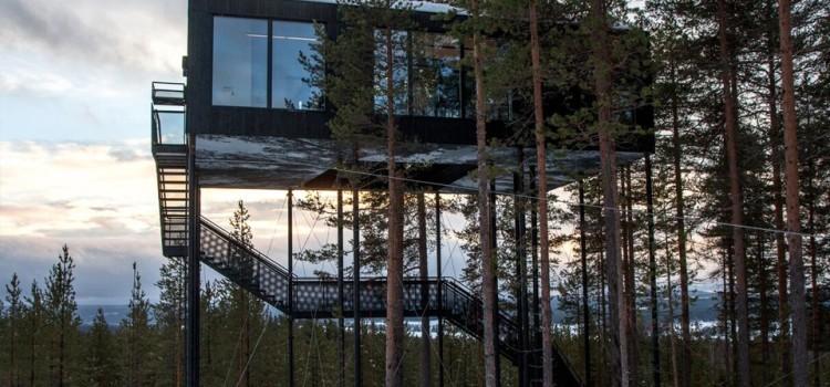 В Лапландии появился отель «на деревьях»