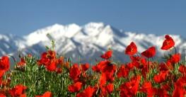 «Симфония гор и голубых озер» Киргизия
