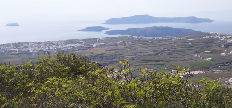 Эксперты определили лучшие острова для отдыха