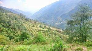 nepal34