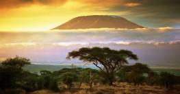 Йога-трекинг «8 марта на Килиманджаро»