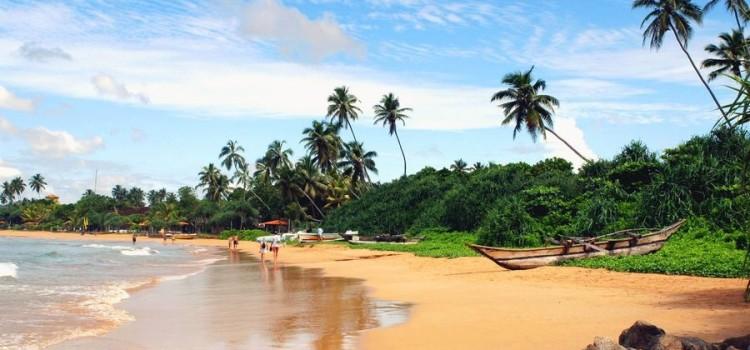 Йога-тур на Шри-Ланку «В гармонии с природой»