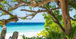 Йога-путешествие на Мальдивы. Новый Год 2019!