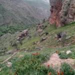 armenia-145