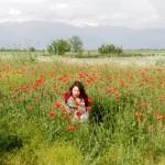 armenia-410