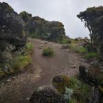 kilimandjaro-11