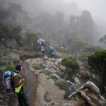 kilimandjaro-21