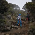 kilimandjaro-22