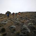 kilimandjaro-26