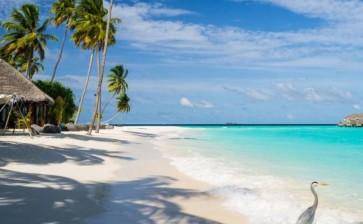 Йога-тур на Мальдивы: «В объятиях океана»