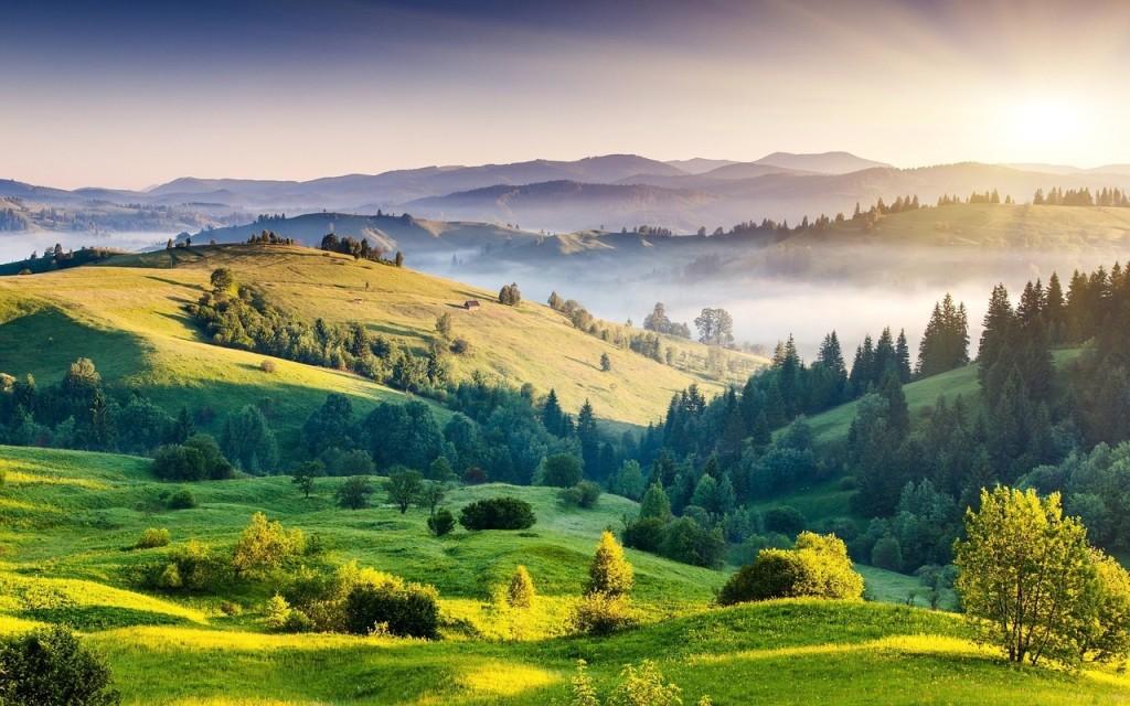Индия. Пейзаж