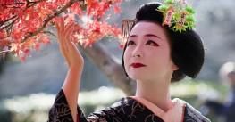 Йога-тур в Японию. «Осенний дзен. Искусство обретения спокойствия»