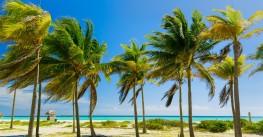«Йога. Вдали от суеты». Новогодний йога-тур 2021. Куба, о.Кайо-Кока